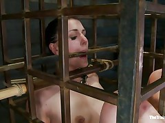 cutie in a cage needs her punishment