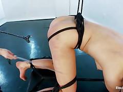 her ass needs something shocking